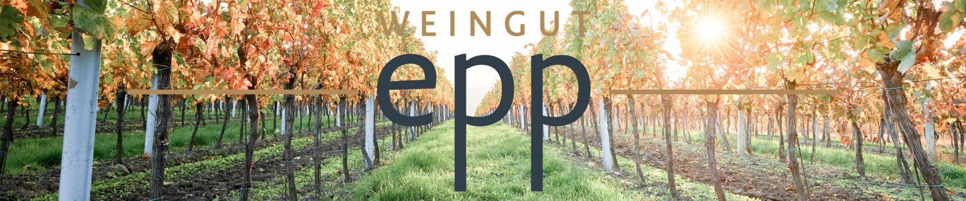 Weingut Epp